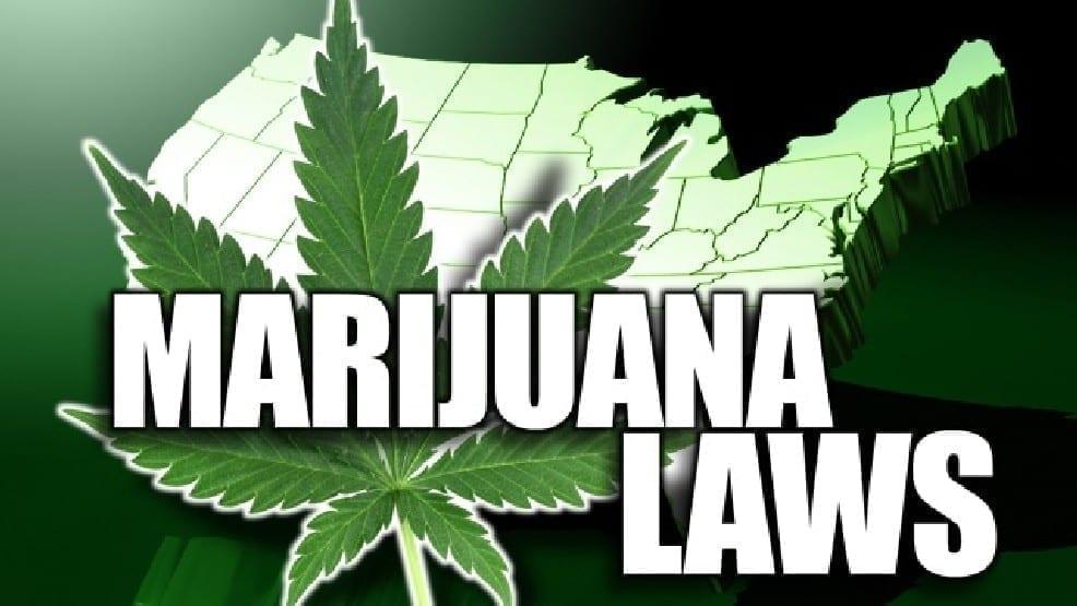 Hiring a Cannabis Attorney